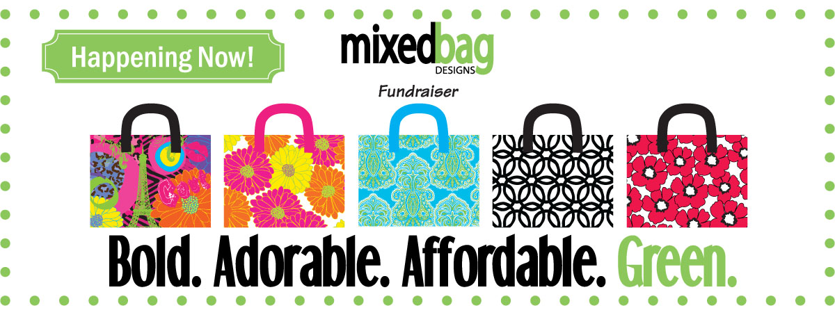 Mixed Bag Designs School Fundraiser